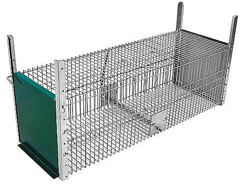 CAGE FOR RABBIT CAPTURE