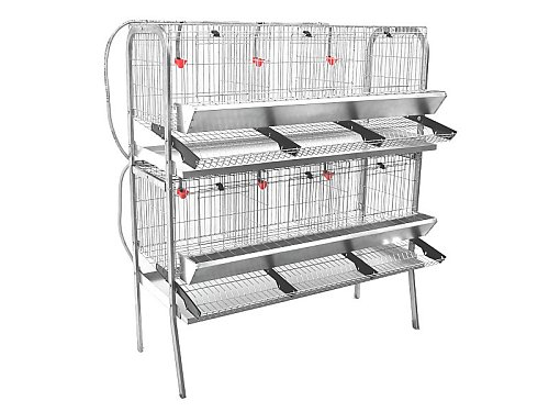 2 LEVEL EXHIBITION HEN CAGE