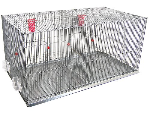 BIG EXHIBITION CAGE FOR BIRDS